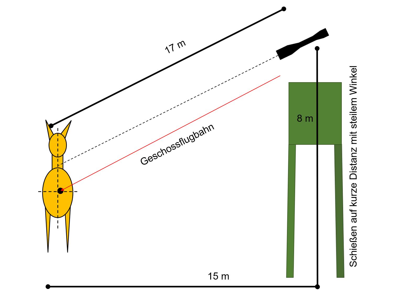 Darstellung Hochsitz und Schuss auf kurze Distanz
